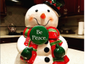BP-Frosty